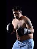 Bokserski bokser Fotografia Royalty Free
