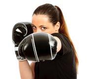 bokserski mądry Obraz Stock