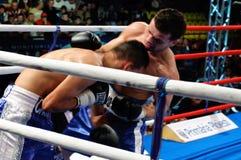 bokserski międzykontynentalny dopasowania tytułu wbc Obraz Stock