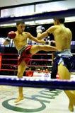 bokserski tajlandzki fotografia royalty free