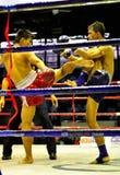 bokserski tajlandzki fotografia stock