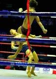 bokserski tajlandzki obraz royalty free