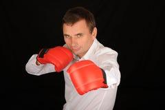 bokserskie rękawiczki obsługują target756_0_ Zdjęcie Royalty Free