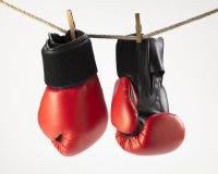 Bokshandschoenen Stock Afbeelding