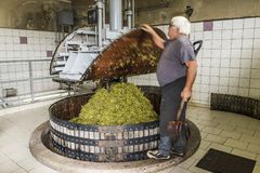 Bokslutvinpress i Pressoir Champagne Royaltyfri Foto