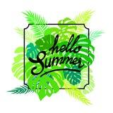 BokstäverHello sommar på grönska lämnar monstera och gömma i handflatan Exotisk tropisk tidskriftsaffisch också vektor för coreld royaltyfri illustrationer