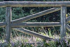 Bokstav E i staket fotografering för bildbyråer