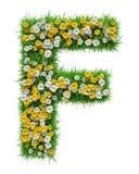 Bokstav F av grönt gräs och blommor Royaltyfri Bild