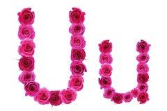 Bokstav u av rosor Arkivfoto