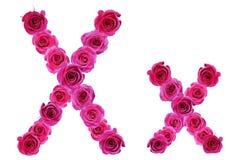 Bokstav x av rosor Arkivfoton