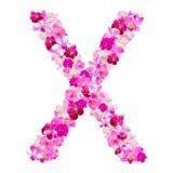 Bokstav X från orkidéblommor som isoleras på vit Arkivbild