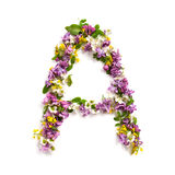 "Bokstaven ""A"" gjorde av olika naturliga små blommor Arkivfoto"