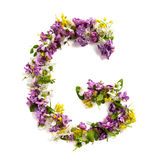 "Bokstaven ""G"" gjorde av olika naturliga små blommor arkivfoton"