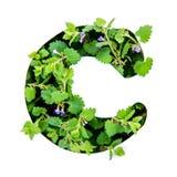 Bokstaven C av det engelska alfabetet från sidorna av gröna växter arkivbilder