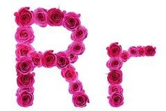 Bokstaven r från rosor Arkivfoton