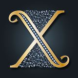 Bokstavslogo X vektor abc Guld- blom- alfabet på en mörk bakgrund vektor illustrationer