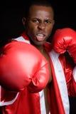 boksu czarny mężczyzna Zdjęcie Stock
