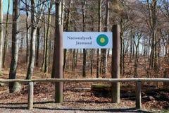 Bokträdskog av den Jasmund nationalparken på den Rugen ön germany royaltyfria foton