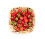 Bol d'isolement de fraise Photo libre de droits