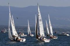 Bol D'Or sailing race on Lake Geneva. royalty free stock images