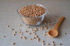 Bol de blé Photo stock