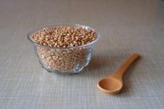 Bol de blé Photo libre de droits