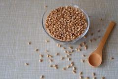Bol de blé Image libre de droits