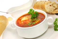 Bol de borscht. image stock