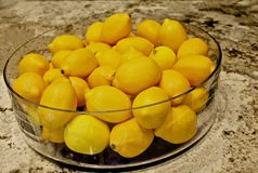 Bol de citrons Photo stock