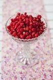 Bol de fraisiers communs Images stock