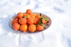 Bol de fruit dans la neige Images stock