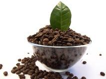 Bol de grains de café avec la lame de café Photographie stock