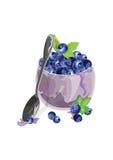 Bol de myrtille avec des fruits frais Photo stock