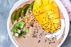 Bol de smoothie de chocolat avec le kiwi, Photographie stock libre de droits
