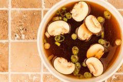 Bol de soupe à oignon d'espace libre de style japonais avec des champignons et Sprin Photographie stock libre de droits
