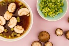 Bol de soupe à oignon d'espace libre de style japonais avec des champignons et Sprin Photo libre de droits