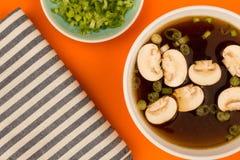 Bol de soupe à oignon d'espace libre de style japonais avec des champignons et Sprin Images libres de droits