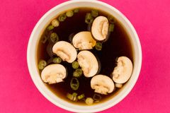 Bol de soupe à oignon d'espace libre de style japonais avec des champignons et Sprin Images stock