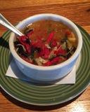 Bol de soupe chaude et épicée à tortilla Photos libres de droits