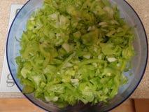 Bol de tomates et d'oignons verts Photographie stock libre de droits