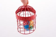 Bol in een birdcage wordt opgesloten die Royalty-vrije Stock Afbeelding