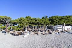 Bol, isola di Brac, Croazia - 18 luglio 2016: Club di Aurum alla spiaggia del ratto di Zlatni Fotografie Stock Libere da Diritti