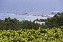 Bol, isola di Brac, Croazia - 23 luglio 2016: Spiaggia del ratto di Zlatni Fotografia Stock