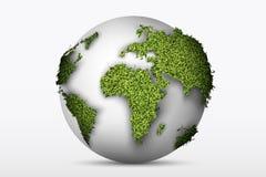 Bol met een groen gras Stock Afbeeldingen