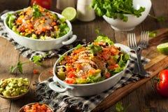 Bol mexicain fait maison de Burrito de poulet Photographie stock libre de droits