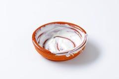 Bol vide de yaourt Photographie stock libre de droits