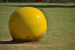 Bola amarilla Foto de archivo libre de regalías