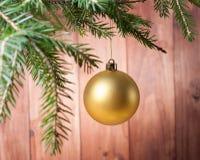 Bola amarilla de la Navidad en las ramas de árbol de navidad Foto de archivo libre de regalías