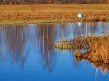 Bola azul Fotografia de Stock Royalty Free