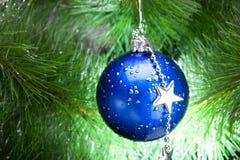 Bola azul de los cristmas en abeto Imagenes de archivo